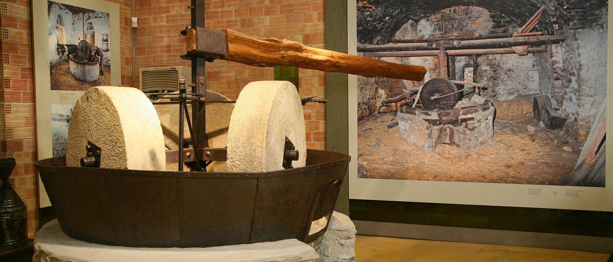 Μουσείο Ελιάς Πηλίου: Τα μυστικά της παραγωγής λαδιού