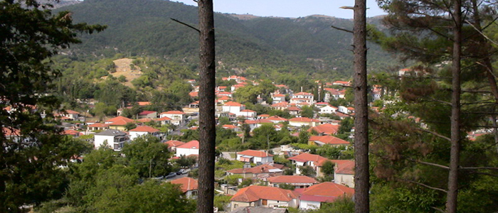 Δελβινάκι Ιωαννίνων: Γραφικό χωριό με… μουσικές ανησυχίες!